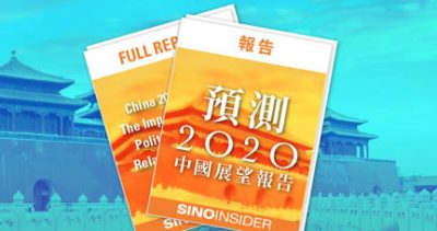 wide 2020 report banner Chinese-s